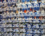 Fische in Plastik