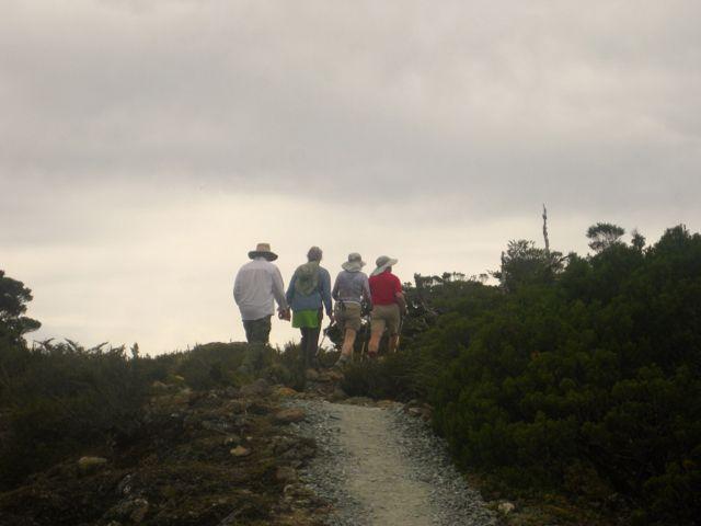 Touri Trail