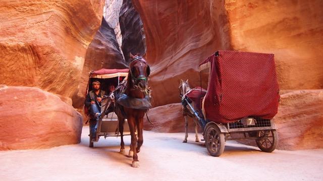 Pferdekutschen in Petra