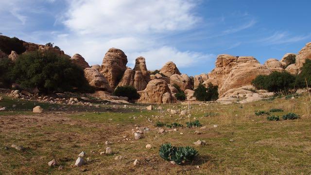 Dana Biosphären Reservat