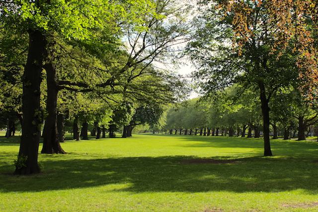 Victoria Park in London